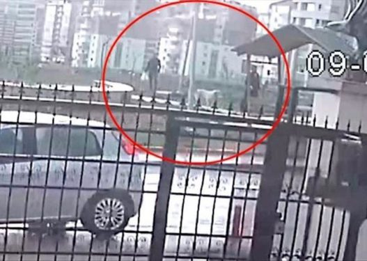 Helmuan qentë e rrugës, tre persona dënohen me 10 vite burg