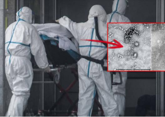 Koronavirusi 'shtrin krahët' edhe në Austri, dyshohet për një rast