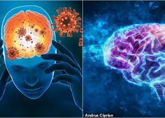 Studimi/ Koronavirusi mund të dëmtojë trurin më shumë nga sa pritej