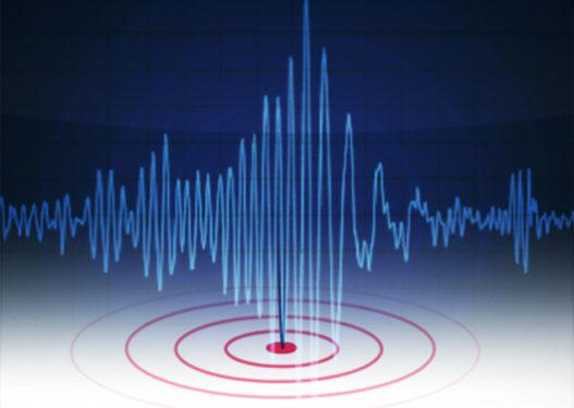 E frikshme! Tërmeti me magnitudë 8.1 shkund Zelandën e Re