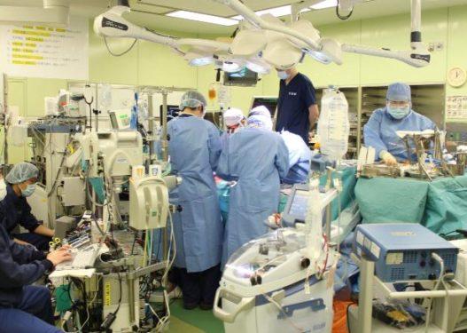 Për herë të parë! Mjekët transplantojnë inde të mushkërive nga dhurues të gjallë tek pacienti me Covid-19!
