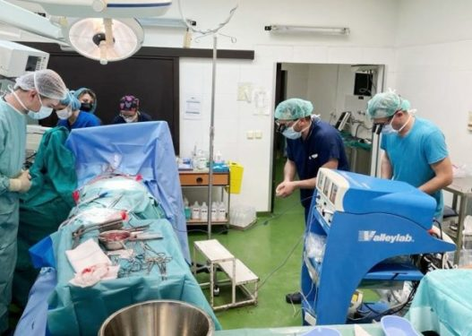 Mjekët u përulën para trupit të vajzës, zemra e së cilës u transplantua te 27 vjeçari