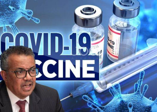 OBSH kritikon shpërndarjen e vaksinave: Mosbalancim skandaloz, shumica e vendeve nuk kanë doza