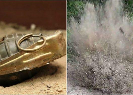 Shpërthimi i granatës në Maliq/ Dëshmitarët: Fermerit i kishte ikur gjuha