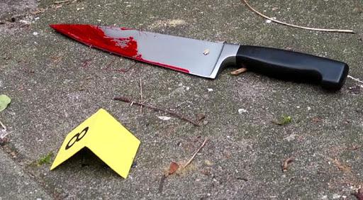 Ish-nënkryetari vritet me thikë në zemër, gjendet në një pellg gjaku nga vëllai i tij