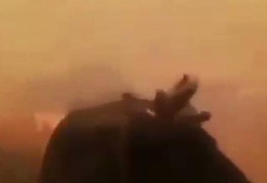 Fermeri në Turqi i rrethuar nga zjarri qan dhe kërkon ndihmë nga Zoti (Video)