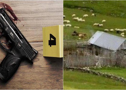13-vjeçari gjeti armën dhe qëlloi për vdekje veten, arrestohet një person në Mat