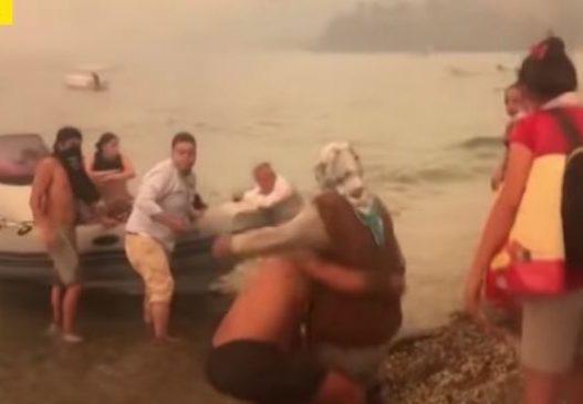 Pamje dramatike në Turqi/ Njerëzit nxitojnë t'i shpëtojnë flakëve duke hipur nëpër skafe