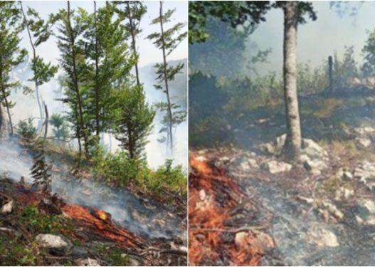 Vatër zjarri në Malin e Qukësit, më shumë se 1 hektar sipërfaqe e djegur