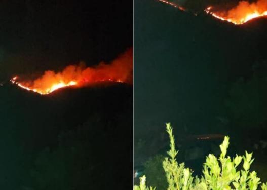 """""""Kërcënojnë"""" vatrat e zjarrit në Vlorë, rrezikohet një banesë"""
